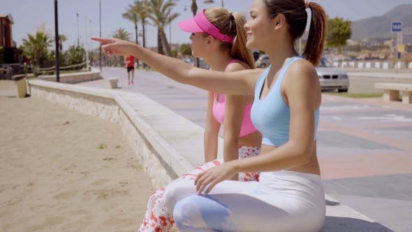 Thumbnail for Young Woman Pointing Something Out To Her Friend