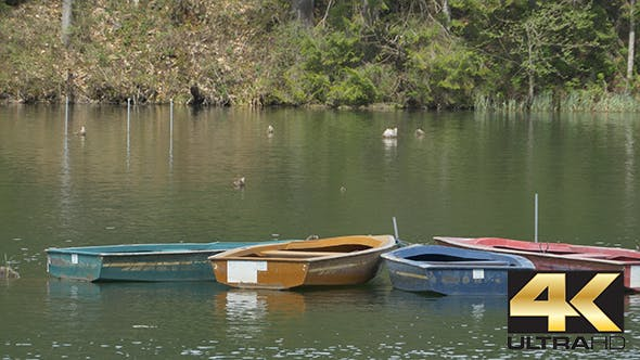 Thumbnail for Boats Floating on Lake