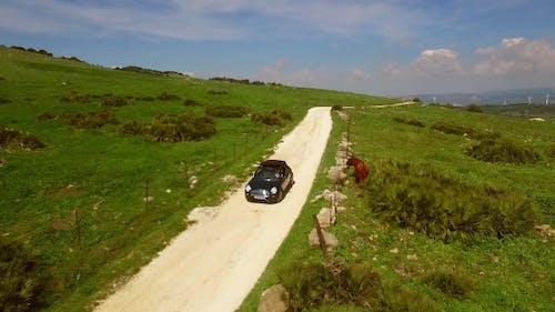 junge frau fahren ein cabriolet auf einer unbefestigten straße