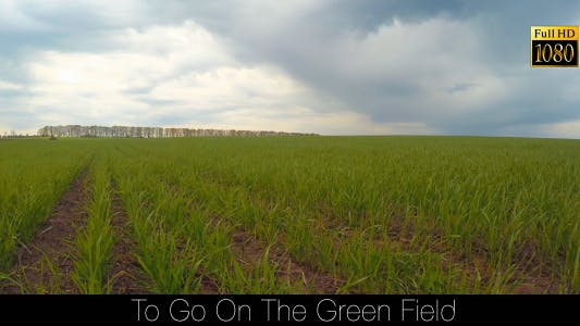 Thumbnail for Go On The Green Field 4