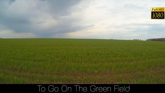 Thumbnail for To Go On The Green Field 6