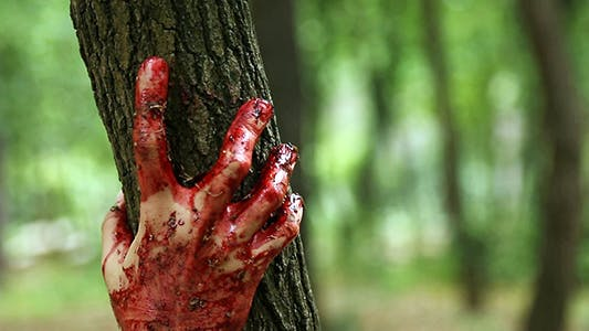 Thumbnail for Bloody Hand in a Forest