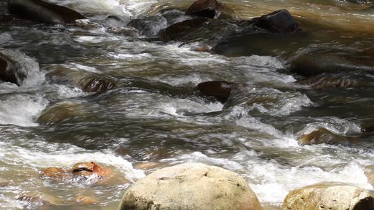 River Stream Flowing