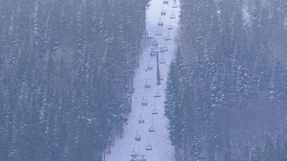 Thumbnail for The Ski Lift Between the Coniferous Trees in the Carpathian Mountains in the Ski Resort