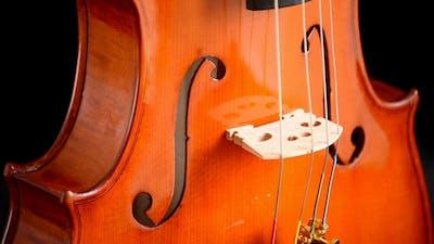 Violin Instrument Gyrating