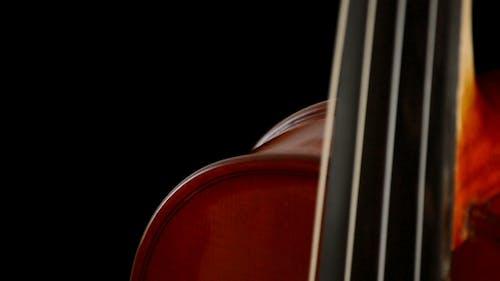 Viola Strings and Fingerboard