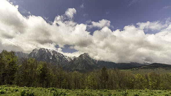 Alpin Landscape with Forest And Snowcapped Mountains