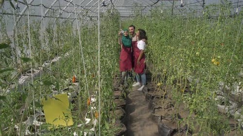Cheerful Breeders Posing for Selfie in Greenhouse