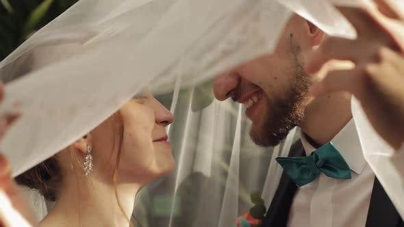 Thumbnail for Newlyweds. Caucasian Groom with Bride Kissing Under the Veil. Wedding Couple