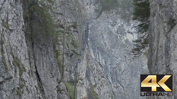 Thumbnail for Steep Rocks and Trees