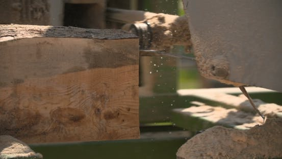 Thumbnail for Sawmill Machine Cutting Down a Tree Branch Into a Wooden Beam