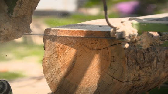 Cover Image for Sawmill Machine Cutting Down a Tree Branch Into a Wooden Beam