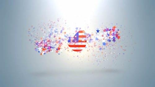 USA Ptriotic Logo
