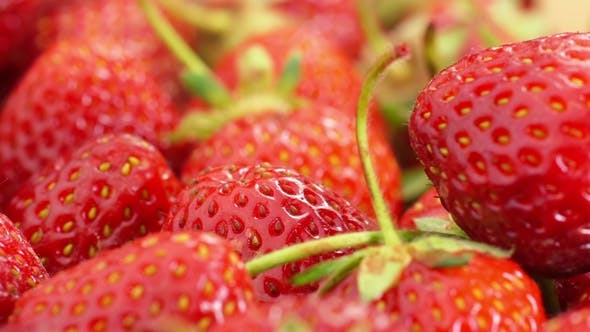 Cover Image for Red Strawberries Rotate.