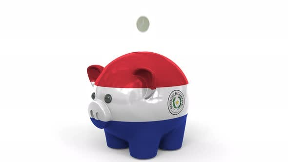 Thumbnail for Coins Fall Into Piggy Bank Painted with Flag of Paraguay