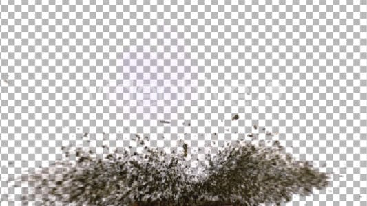 Thumbnail for Dirt Explosion