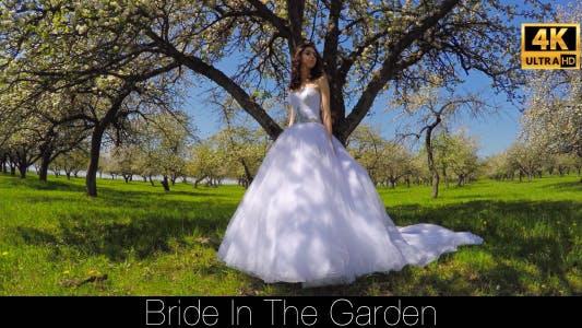 Thumbnail for Bride In The Garden 5