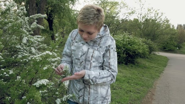 Thumbnail for Pretty Blond Girl Looks At Flowers In a Green Park
