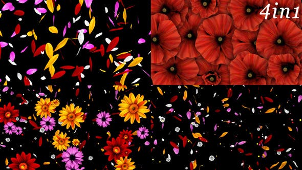 Thumbnail for Colorful Flowers Pack