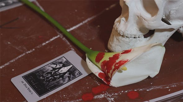 Thumbnail for Bloody Occult Ritual with Tarot Cards