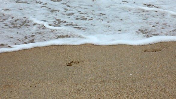 Thumbnail for Footprints