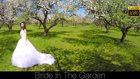 Cover Image for Bride In The Garden 9