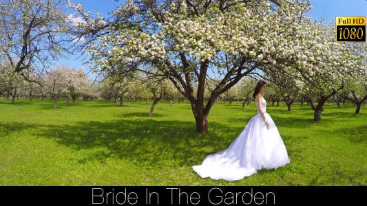 Cover Image for Bride In The Garden 16