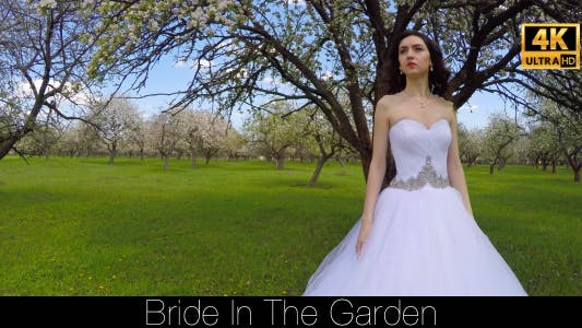 Cover Image for Bride In The Garden 17