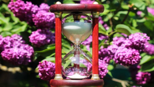 Thumbnail for Hourglass On The Background Of Blooming Lilacs 2