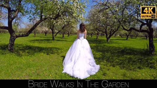 Thumbnail for Bride Walks In The Garden