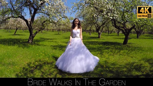 Cover Image for Bride Walks In The Garden 2