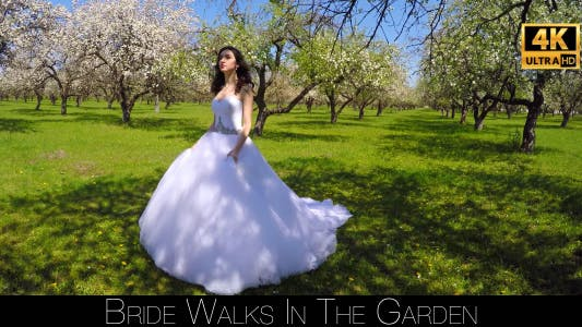 Thumbnail for Bride Walks In The Garden 3