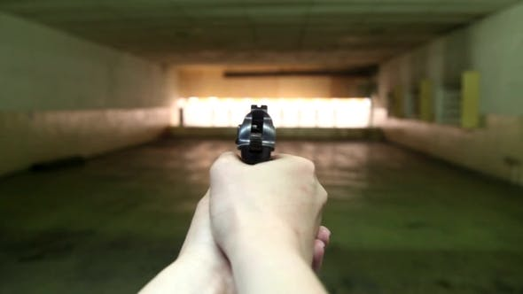 Thumbnail for The Gun In The First Person In The Dash