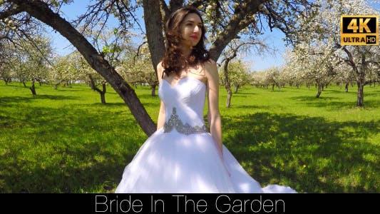Thumbnail for Bride Walks In The Garden 6
