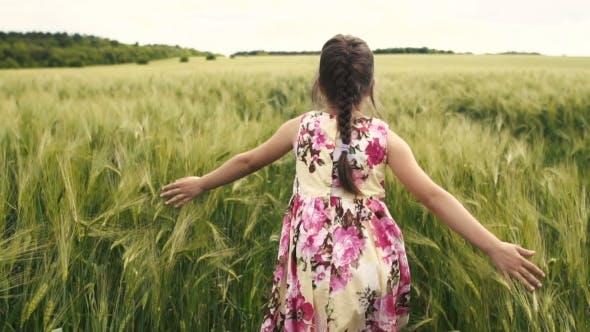 Thumbnail for Little Girl Running Across Wheat Field