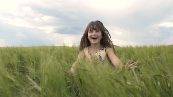 Cover Image for Little Girl Jump Out The Wheat Field