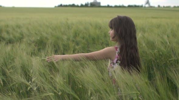 Thumbnail for Little Girl Walk Across The Wheat Field