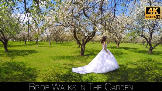 Cover Image for Bride Walks In The Garden 10