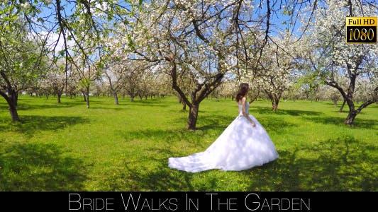 Thumbnail for Bride Walks In The Garden 10