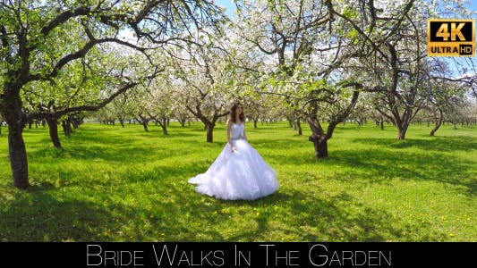 Cover Image for Bride Walks In The Garden 11