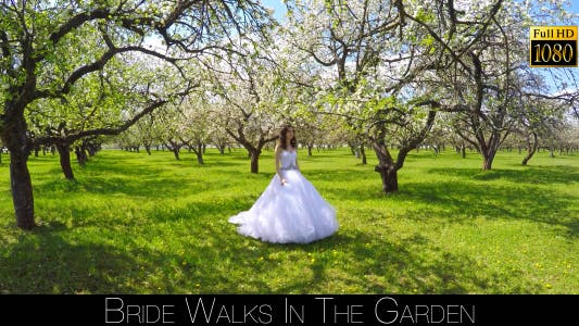 Cover Image for Bride Walks In The Garden 12