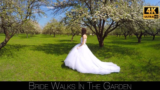 Thumbnail for Bride Walks In The Garden 13