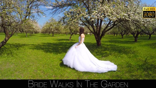 Cover Image for Bride Walks In The Garden 13