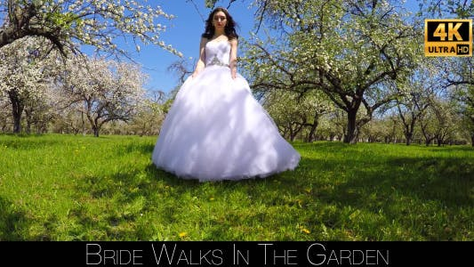 Cover Image for Bride Walks In The Garden 14