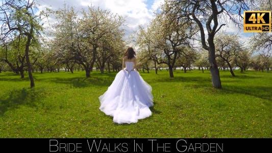Thumbnail for Bride Walks In The Garden 15