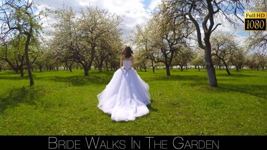 Thumbnail for Bride Walks In The Garden 15