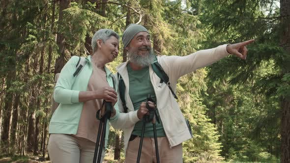 Thumbnail for Seniors Walking in Forest