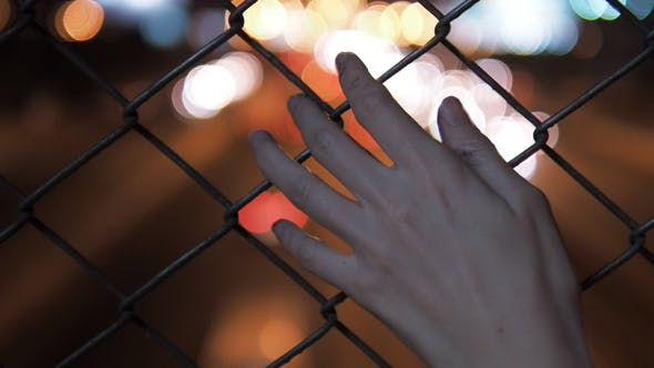 Thumbnail for Hand And Fence
