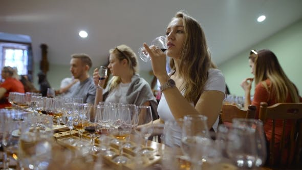 Thumbnail for Group Of Young People On a Wine Tasting.