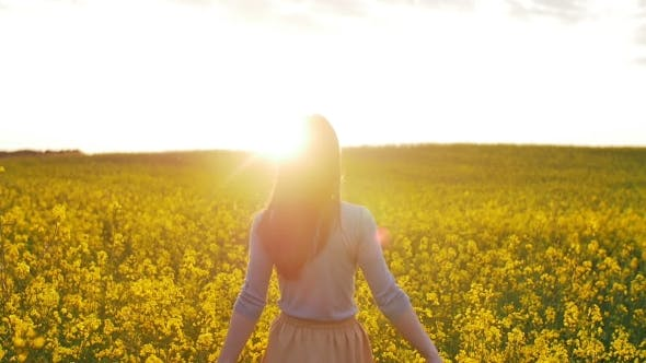 Thumbnail for Beautiful Girl Walks On Field Of Flowers At Sunset
